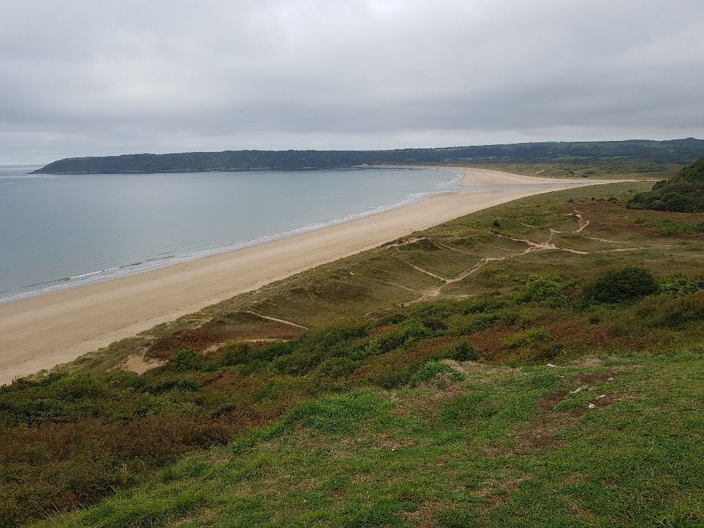8. Ups and downs on the South Gower coast – 8 (or 14 miles back to Campus)