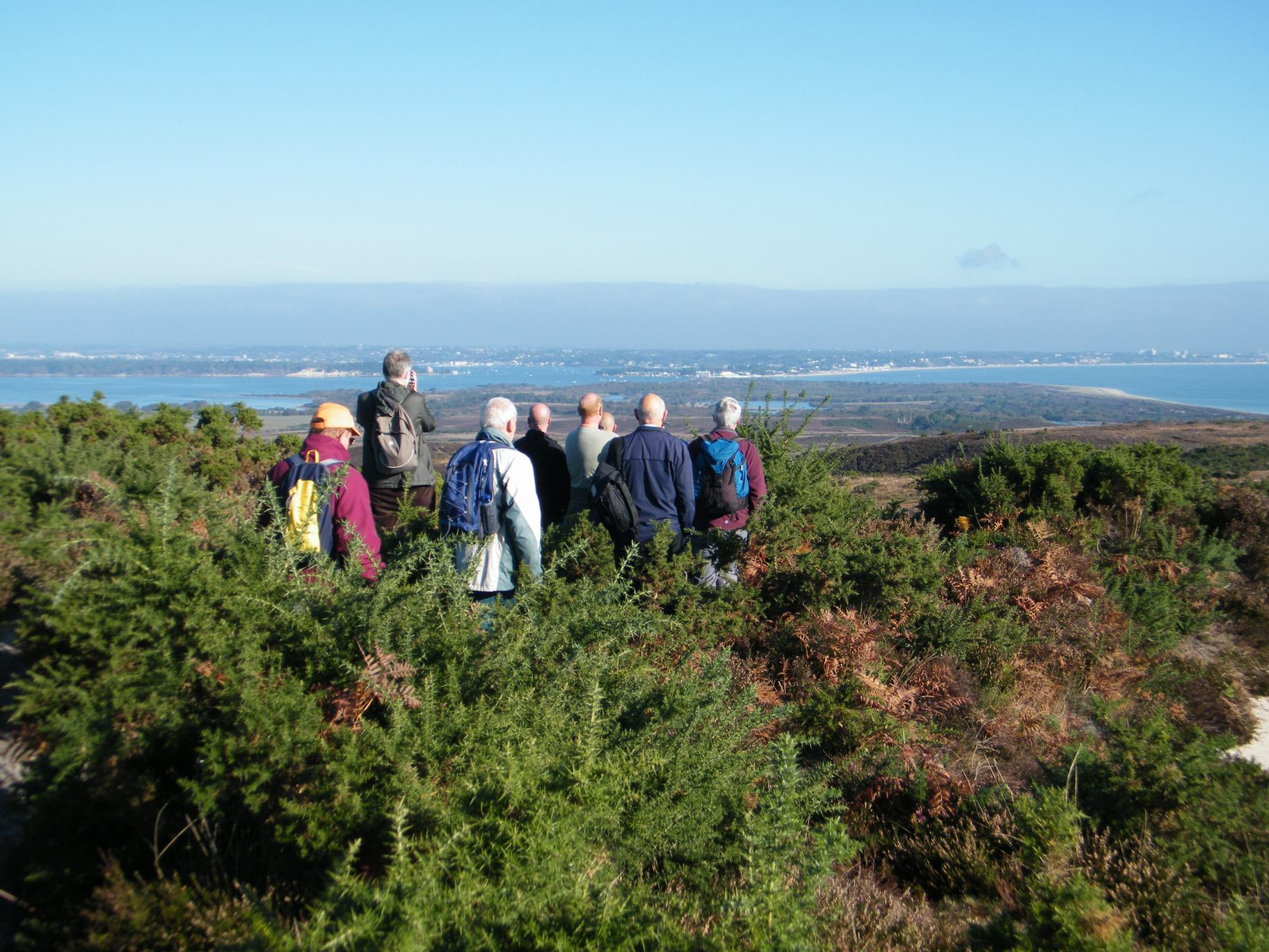 Godlingston Heath and the Purbeck Forest