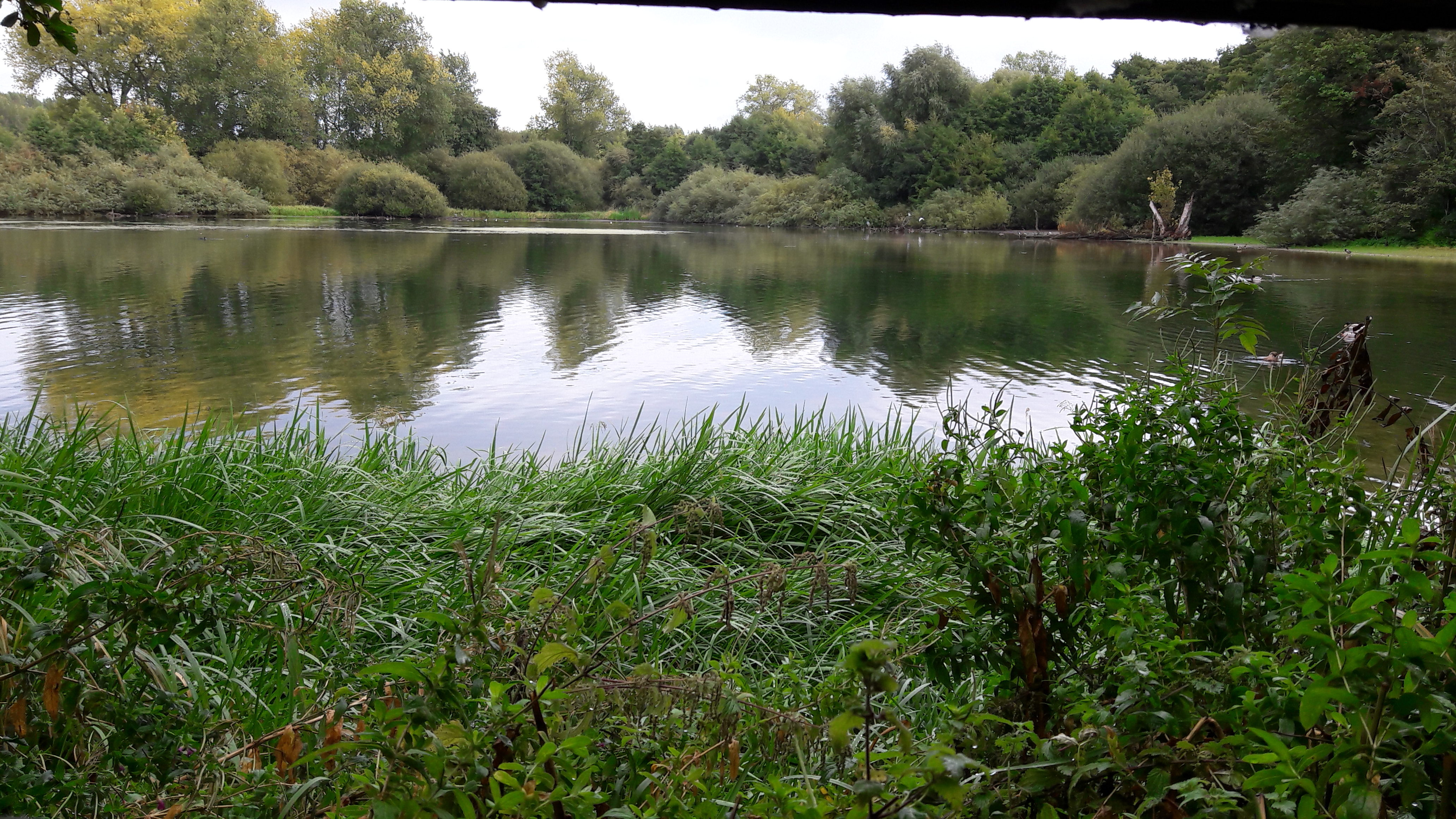 Tring Park & the Grand Union Canal