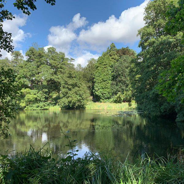 Pond Woburn Estate